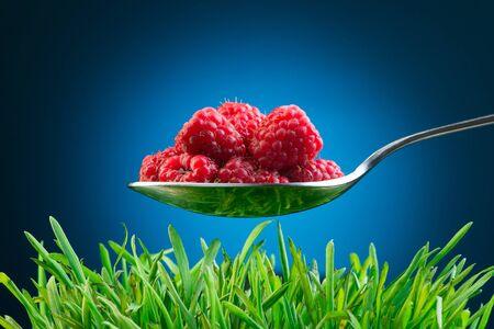 Full spoon of fresh raspberries above green grass with blue vignette