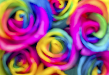 homophobia: Blurry image of rainbow roses. Postcard for Valentines and Mothers day. Stock Photo