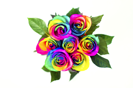 homophobia: Rainbow roses on white bricks and wood background. Postcard for Valentines and Mothers day. Stock Photo