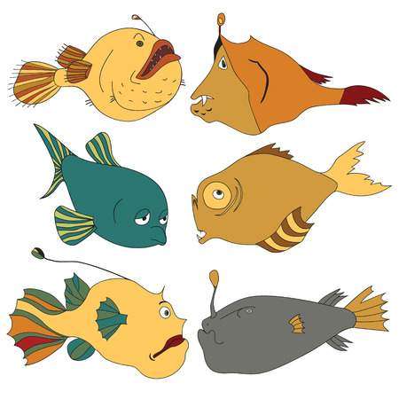 Bright and stylish deep-water fishes.