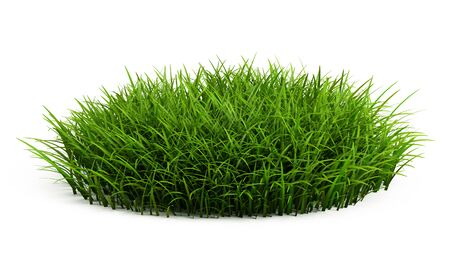 grass isolated: Round patch of fresh grass isolated on white