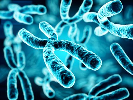 clone: 3d illustration of Chromosomes Stock Photo