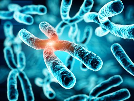 3d illustration of Chromosomes Stock Illustration - 72170269