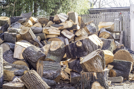 Fresh cut firewood - winter is here - stay warm and healthy