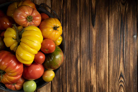 Fresh tomatoes on a dark wooden background. Harvesting tomatoes. low key.