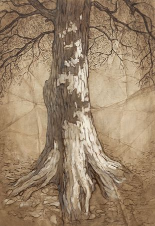 Tree with leaves . Hand drawing. sketch. photo
