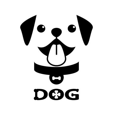 chien: Sourire chiots pitbull sur fond blanc.