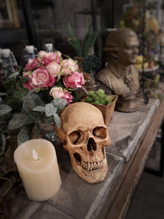 Halloween still life : The human skull with white candle light, vintage flower bouquet in vase and ornamental plants on wooden table in the room