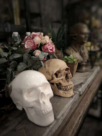 Halloween still life : White ceramic skull and old human skull with, bottle, flower bouquet in vase and ornamental plants on wooden table in the mystery room Zdjęcie Seryjne