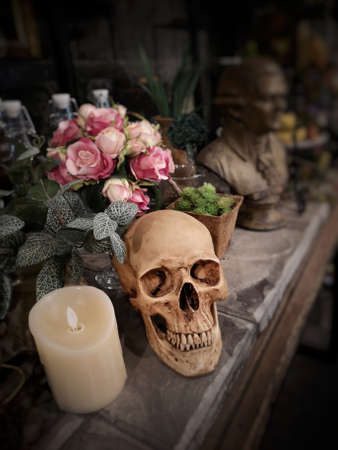 Halloween still life : The human skull with white candle light, vintage flower bouquet in vase and ornamental plants on wooden table in the mystery room Zdjęcie Seryjne