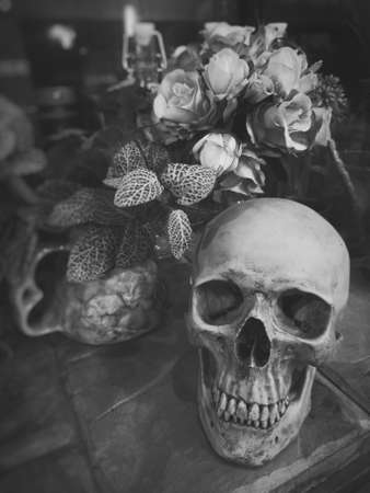 Halloween still life : The human skull with bottle, vintage books, flower bouquet in vase and ornamental plants on wooden table in the mystery room, soft focus, blurred image, drama filter