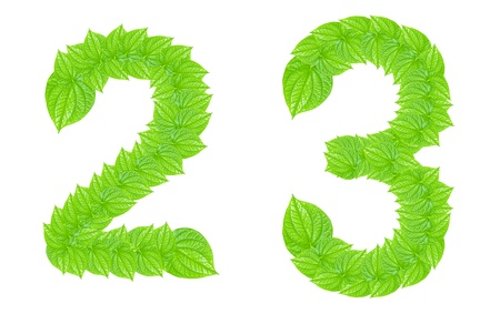 Number made from green leafs with number 2 to 3 photo