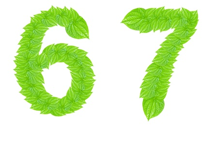 Number made from green leafs with number 6 to 7 Stock Photo - 11689228