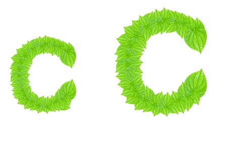 English alphabet made from green leafs with letter C in small capital and large capital letter photo