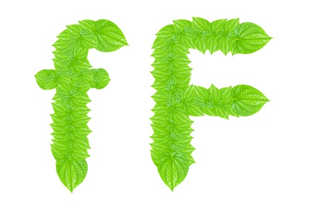 English alphabet made from green leafs with letter F in small capital and large capital letter photo