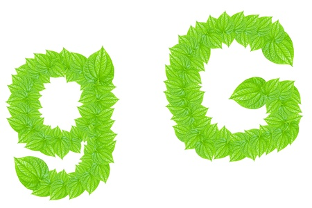 English alphabet made from green leafs with letter G in small capital and large capital letter photo