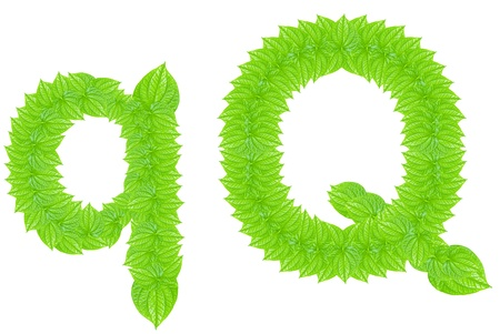 English alphabet made from green leafs with letter Q in small capital and large capital letter