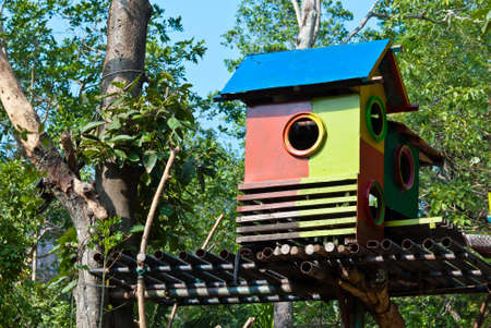 Colorful bird house on a tree, taken in the afternoon photo