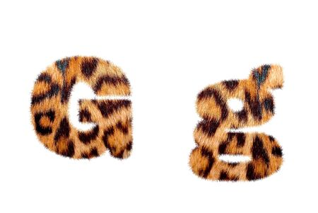 Custom Ingl�s de base de texto en piel de leopardo, aislado en blanco photo