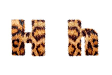 english text: Custom english text base on leopard skin, isolated in white Stock Photo