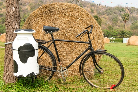 steel  milk: A black milk man bicycle with steel milk container at the back, taken outdoor on sunny day Stock Photo