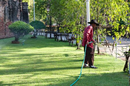 Old man watering plants in the garden, taken in afternoon, useful for industrial concepts Stock Photo