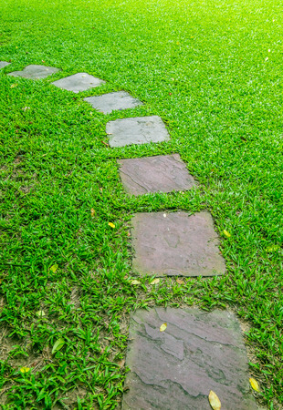 walk path: walk path on green grass