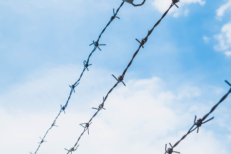 oppress: Shallow depth of field, old barbed steel wire against blue sky Stock Photo