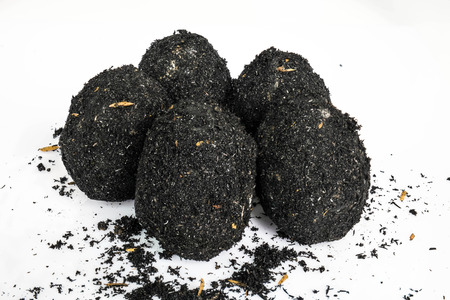 the ashes: organic salted eggs covered by natural ashes