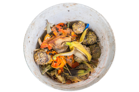 decompose: Organic waste of fruits in garbage