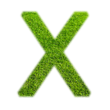 uppercase: X uppercase alphabet made of grass texture, isolated on white Stock Photo