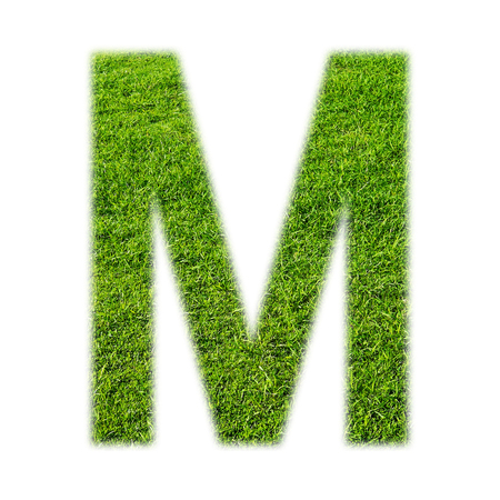uppercase: M uppercase alphabet made of grass texture, isolated on white