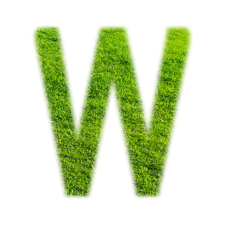 grass texture: W uppercase alphabet made of grass texture, isolated on white