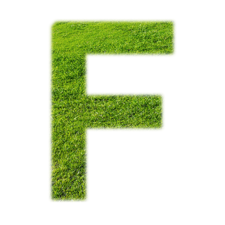 grass texture: F uppercase alphabet made of grass texture, isolated on white background