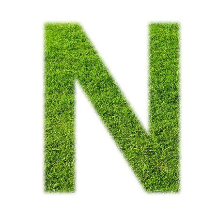 """lettre alphabet: """"N"""" majuscule alphabet fait de l'herbe texture, isol� sur fond blanc Banque d'images"""