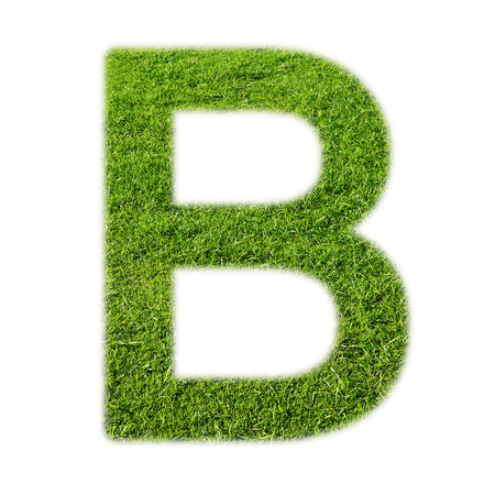 alphabet letter: B uppercase alphabet made of grass texture, isolated on white background