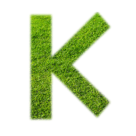 grass texture: K uppercase alphabet made of grass texture, isolated on white background