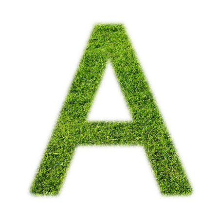 alphabet letter: A uppercase alphabet made of grass texture, isolated on white background