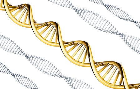 Gouden DNA met zilver DNA, dominant gen, op een witte achtergrond