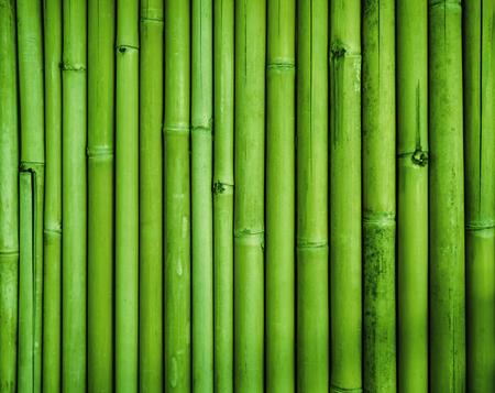 lineas horizontales: valla de bambú verde de la textura Foto de archivo