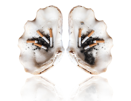 the kills: Abstract smoking human lung, world tobacco day, smoking kills concepts, isolated on white background Stock Photo