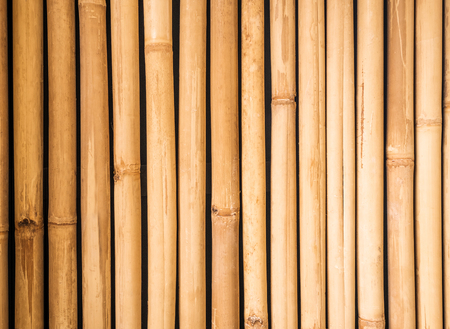 bamboo texture: Yellow bamboo fence texture, bamboo background, texture background, bamboo texture