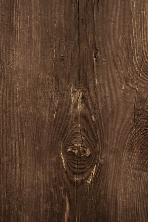 burl wood: old wood texture Stock Photo