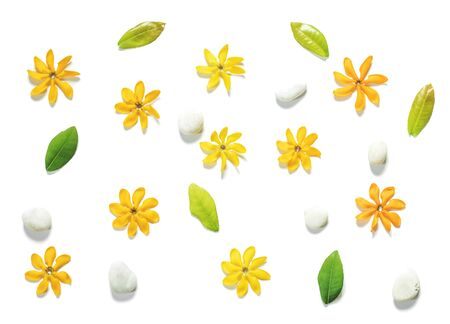 white pebble: Yellow flowers, green leaves and white pebble stones on white background Stock Photo
