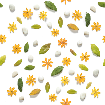 kinfolk: Seamless, yellow flowers with leaves and white pebbles stones, on white background Stock Photo