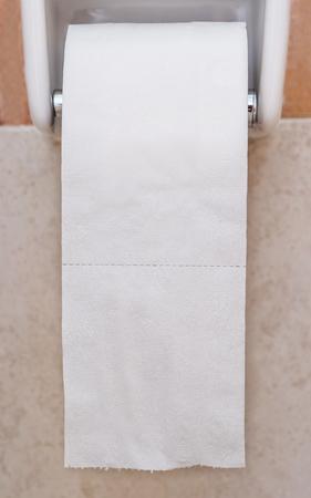 paper hanger: Close-up roll toilet paper in restroom