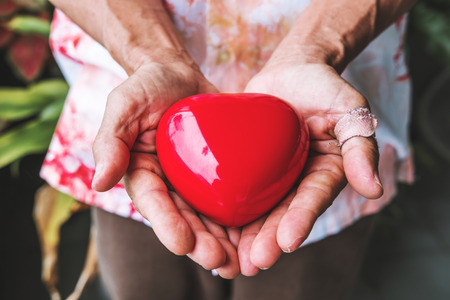 donacion de organos: Manos mayores con la herida del corazón que lleva el tono, la vendimia