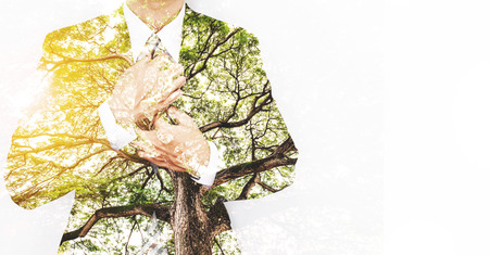 Double Exposure Businessman in Suit with Big Tree with Bright Sunlight