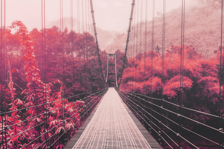 red mountain: Beautiful autumn forest and sunlight, with steel suspension bridge, vintage tone