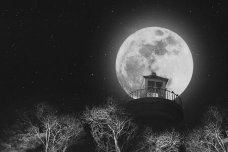 lighthouse at night: Full moon at night with lighthouse on clear sky with stars, and dead branches, black and white images Stock Photo